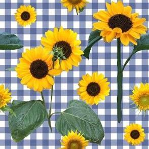 July Sunflowers In The Garden