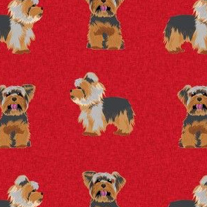 yorkie quilt dog red