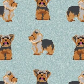yorkie dog fabric  - dog fabric, yorkshire terrier fabric, blue