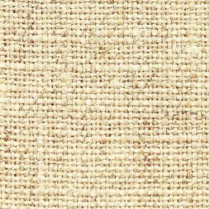 Burlap Texture // Calico