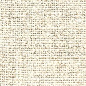 Burlap Texture // Parchment