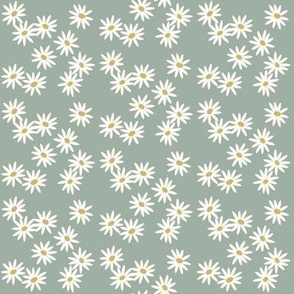 Daisies - dusty mint