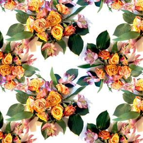 Photo Roses