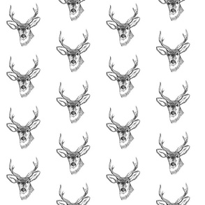 Deer Head Buck Grey Sketch