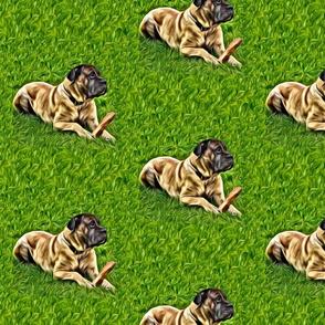 canecorso dog breed fabric