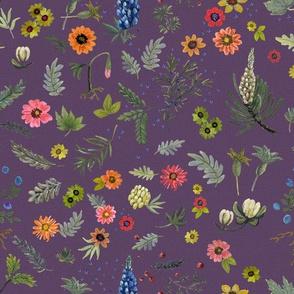 boho botanical - lavender