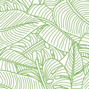 Tropical Leaves Banana Monstera Lime Green and White