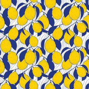 Big Modern Lemons