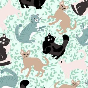 Wondering Felines