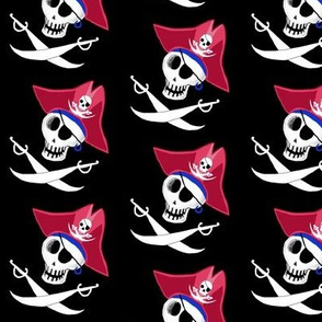 pirate skull, small scale, black and white, red, blue