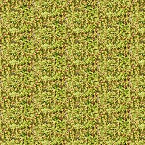 Subarctic Beach Greens fabric