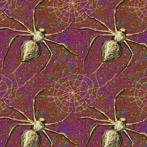 Spiders 1 Grape