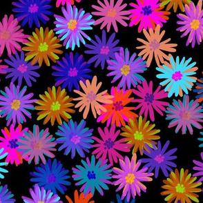 "crazy daisies, 1.5"""