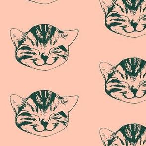 kitty medium rosé forest