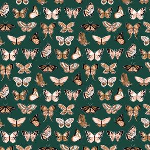 butterflies on forest-01