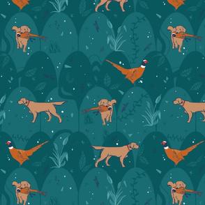 bird dogs
