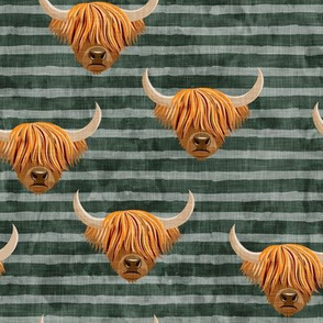 Highland cattle - highlander cow -  green on stripes - LAD19