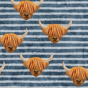 Highland cattle - highlander cow -  blue on stripes - LAD19