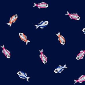 Colourful fish in a dark ocean