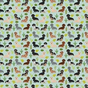 TINY - dachshund cactus fabric cute doxie dog design best doxie dogs fabric cute dachshunds