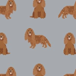cavalier king charles spaniel cute dog pet dogs ruby black and tan, ruby dog cavalier dog fabric, - grey