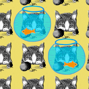 Cat and mouse pattern