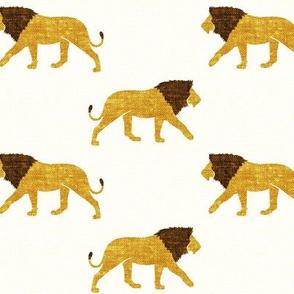 lions - walking lions - LAD19