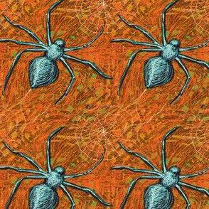 Spiders 1 Orange