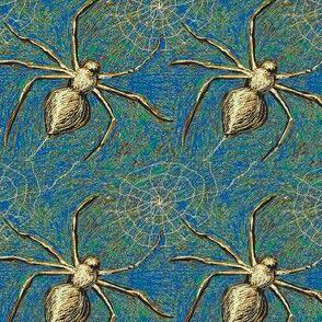 Spiders 1 Bleu