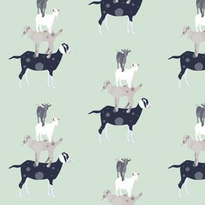 Goat Stack