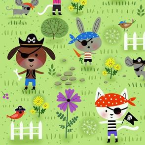 Backyard Pirates