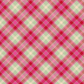 Cherry Pink and Mint Apple Plaid