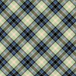 Colonial Blue and Mint Apple Plaid