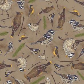 Neutral Birds - Medium Brown