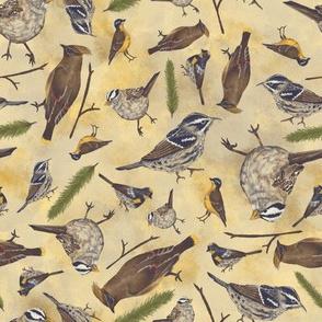 Neutral Birds - Light Yellow