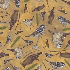 Neutral Birds - Yellow