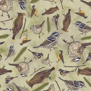 Neutral Birds - Light Green
