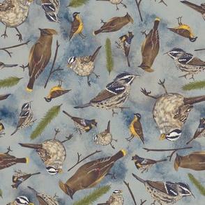 Neutral Birds - Light Blue