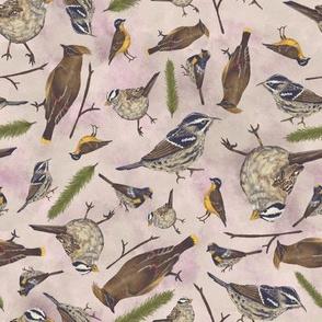 Neutral Birds - Light Pink