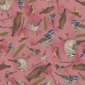 Neutral Birds - Red