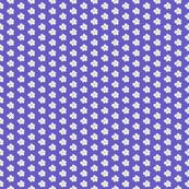 Blooms on Purple