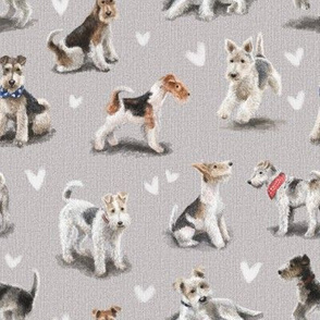 The Fox Terrier