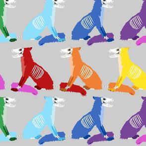 Silver Rainbow Skull Foxes