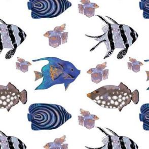Blue fish pattern  on white background