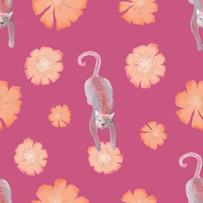 Cats and flowers - pink and orange theme