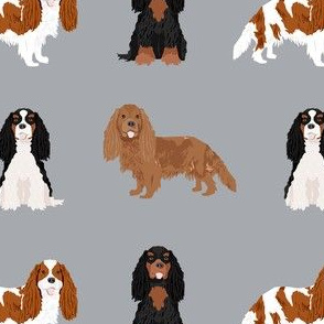 cavalier king charles spaniel dog fabric - mixed dog coats fabric, dog breeds fabric - grey