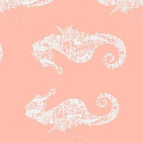 Seahorses for Ginny -rotated