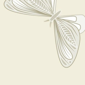 large - moths in natural