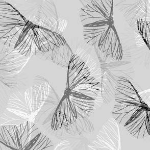 moth_grey-white