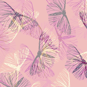 moth_cassis_pink